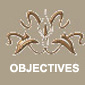 objectives_WT copy