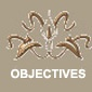objectives_WT-copy